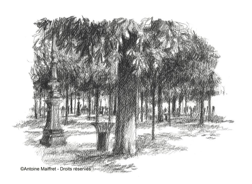 Jardin des tuileries sous les arbres parisaucrayon for Au jardin des tuileries